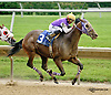 Run With Me winning at Delaware Park racetrack on 6/26/14