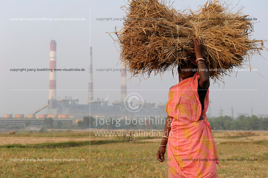 "Südasien Asien Indien IND Westbengalen, Kohlekraftwerk erzeugt Strom mit Kohle aus Bihar und Jharkand, Frau mit Reisstroh auf einem Reisfeld. -  Energie | .South Asia India Westbengal, coal power house - energy .| [ copyright (c) Joerg Boethling / agenda , Veroeffentlichung nur gegen Honorar und Belegexemplar an / publication only with royalties and copy to:  agenda PG   Rothestr. 66   Germany D-22765 Hamburg   ph. ++49 40 391 907 14   e-mail: boethling@agenda-fototext.de   www.agenda-fototext.de   Bank: Hamburger Sparkasse  BLZ 200 505 50  Kto. 1281 120 178   IBAN: DE96 2005 0550 1281 1201 78   BIC: ""HASPDEHH"" ,  WEITERE MOTIVE ZU DIESEM THEMA SIND VORHANDEN!! MORE PICTURES ON THIS SUBJECT AVAILABLE!! INDIA PHOTO ARCHIVE: http://www.visualindia.net ] [#0,26,121#]"