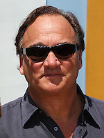 "WESTWOOD, LOS ANGELES, CA, USA - MAY 03: Jim Belushi at the Los Angeles Premiere Of ""Legends Of Oz: Dorthy's Return"" held at the Regency Village Theatre on May 3, 2014 in Westwood, Los Angeles, California, United States. (Photo by Celebrity Monitor)"