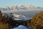 Mt. San Gorgonio from San Jacinto Mountains