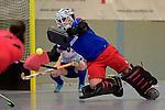 Mannheimer HC v TSV Mannheim