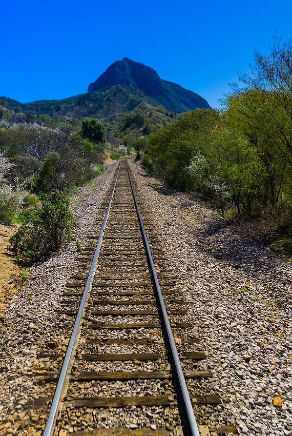 Train tracks of the Chihuahua al Pacifico Railroad (Chepe) train, near the Copper Canyon, Mexico