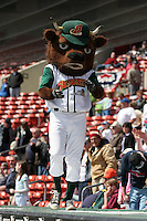 Buffalo Bisons mascot Buster T. Bison during an International League game at Dunn Tire Park on April 17, 2006 in Buffalo, New York.  (Mike Janes/Four Seam Images)
