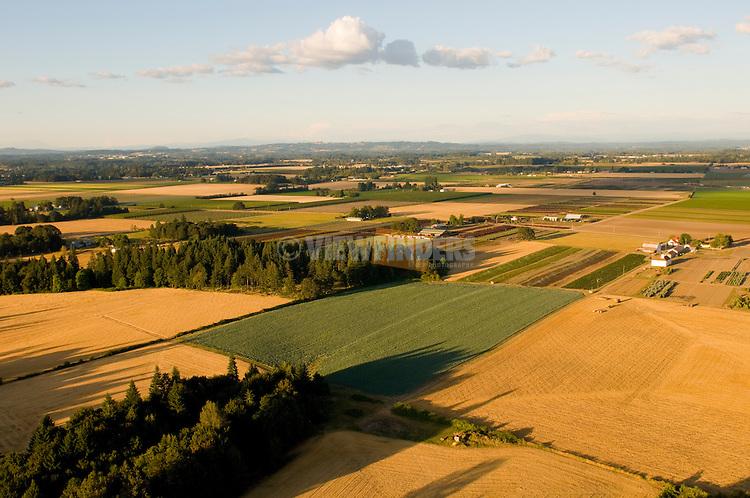 Aerial view of Farmland in Oregon