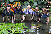 London, UK. 16 March 2015. L-R: Eliot Barden, Carlos Magdalena, Boris Johnson, Jessica Lee and Miranda Janakta. Mayor of London Boris Johnson puts on waders and joins Kew horticulturist Carlos Magdalena, apprentices and diploma students in the pond to plant young Victoria amazonica waterlilies, colourful hybrid waterlilies, in the Princess of Wales Conservatory at the Royal Botanic Gardens, Kew.