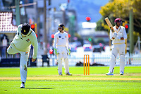 Steve Murdoch stretches on day two of the Plunket Shield cricket match between Wellington Firebirds and Northern Districts in Wellington, New Zealand on Monday, 26 March 2018. Photo: Dave Lintott / lintottphoto.co.nz