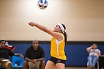 SWCID Volleyball Tournament
