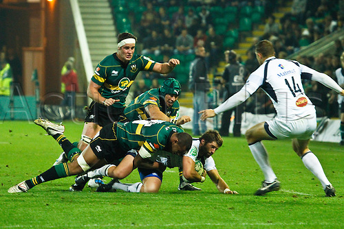 08.10.2010 Castres Sscrum-half Sebastien Tillous-Borde is tackled by Nothampton's Christian Day, Bruce Reihana and Courtney Lawes as Romain Martial 914) looks on.  08.10.2010 Rugby Union Heineken Cup from Franklin's Gardens Northampton Saints v Castres.  Final score : Northampton 18-14 Castres