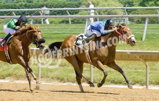 Pot of Gold winning at Delaware Park on 6/16/12