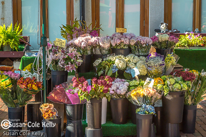 Outdoor florist at Quincy Market, Boston, Massachusetts, USA