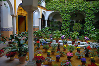 The flowered patio of a traditional house in the suburb of Barrio de Santa Cruz in Seville, Andalusia, Spain.