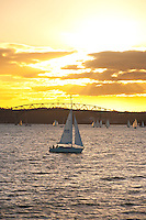 Sailing boat at Sunset in Waitemata Harbour, Auckland, North Island, New Zealand. Auckland, situated in the Hauraki Gulf of North Island is the largest and most populated city in New Zealand. With plenty to do within the city, and endless beautiful scenery on the surrounding islands and area just outside Auckland, it is easy to see why it is most people's first stop on a tour of New Zealand.