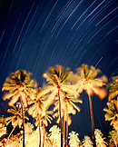 MADAGASCAR, palm trees with star trails at night, Anjajavy Hotel