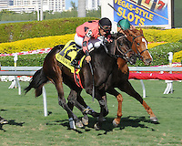 Frolic's Revenge captures the Ginger Brew Stakes atr Gulfstream Park on 12/24/11. Ridden by Paco Lopez