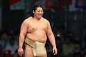 Sumo Tournament Provincial Tour at Niconico Chokaigi 3