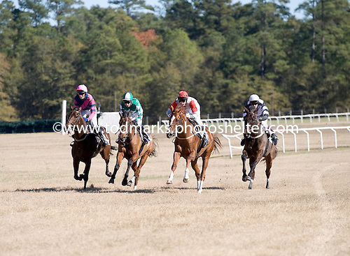 Good Request (left) leads field to last jump in the a maiden race on the Colonial Cup undercard.