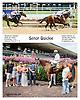 Señor Quickie winning at Delaware Park on 8/7/14
