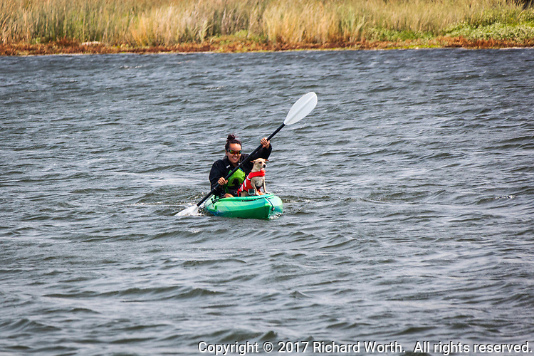 A kayaker and her dog enjoy paddling around the Sacramento-San Joaquin River Delta at Big Break Regional Shoreline in Oakley, California.  No release - Editorial use only.