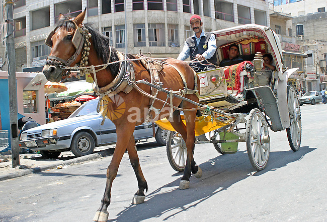 A Palestinian man ride their horse cart in old city in the West Bank city of Hebron on July 10, 2009. Photo by Najeh Hashlamoun