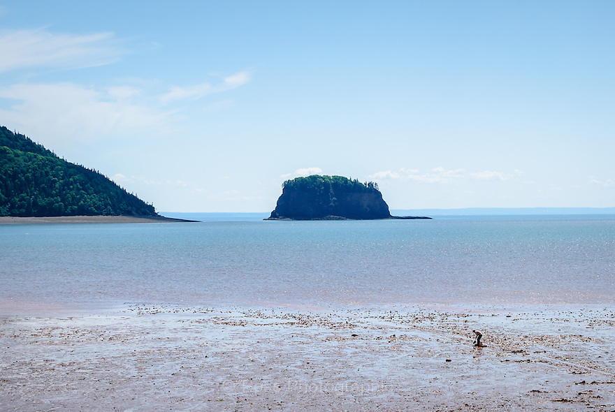 A lone man digs clams on the beach at low tide, Five Islands, Nova Scotia