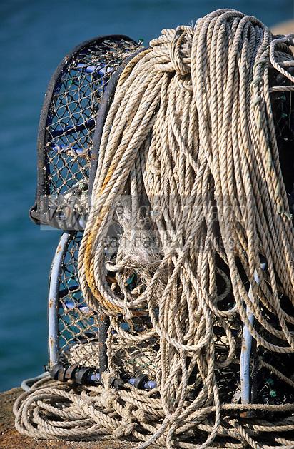 Europe/France/Bretagne/56/Morbihan/Quiberon/Port-Haliguen: Casiers à crustacés et cordages sur le port