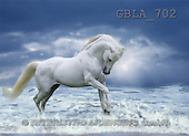 Bob, ANIMALS, collage, horses, photos(GBLA702,#A#) Pferde, caballos