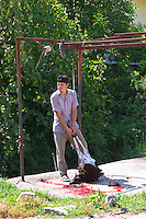 A road side butcher and street merchant. Slaughtering a goat outside. In the process of skinning it. Albania, Balkan, Europe.