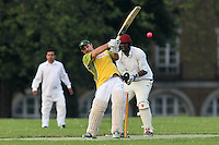 Cricket 2012-05