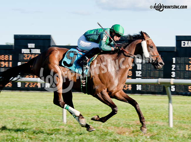 Fire Ruler winning at Delaware Park on 9/28/13