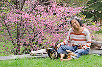 An older local Asian woman smiles while relaxing with her dog and a cell phone in front of a cherry blossom tree, Pa'auilo Mauka, Big Island.