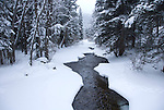Winter scenic, snow along North St. Vrain Creek in Wild Basin, Rocky Mountain National Park, Colorado, USA