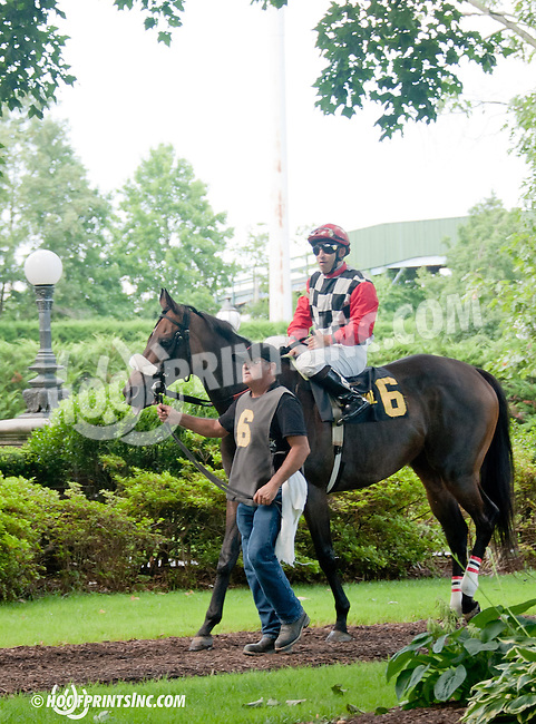 before The Hockessin Stakes at Delaware Park on 7/4/13