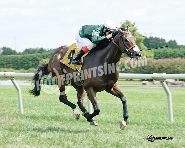 Fudge E winning at Delaware Park on 9/10/14