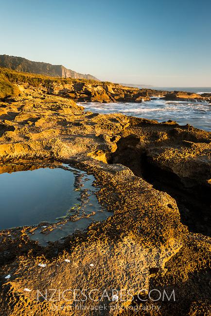 Limestone rocks with water pools on Truman Track under sunset in Punakaiki, Paparoa National Park, Buller Region, West Coast, New Zealand, NZ