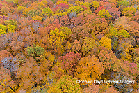 63876-02220 Aerial view of fall color trees Stephen A. Forbes State Park Marion Co. IL