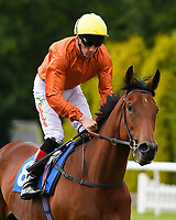 Lily of Year ridden by Shane Kelly goes down to the start of The Dee Wilks Against The Odds Confined Novice Stakes (Div 2) during Afternoon Racing at Salisbury Racecourse on 12th June 2018