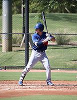 Tre Todd - 2018 AIL Dodgers (Bill Mitchell)
