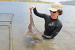 Jemima Stratford With Thornback Ray