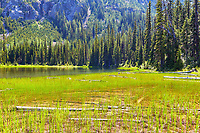 View of the shore of Cutthroat Lake, located near Washington Pass in the North Cascades of Washington state