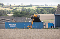 Grain lorry being loaded with oilseed rape on farm<br /> ©Tim Scrivener Photographer 07850 303986<br />      ....Covering Agriculture In The UK....