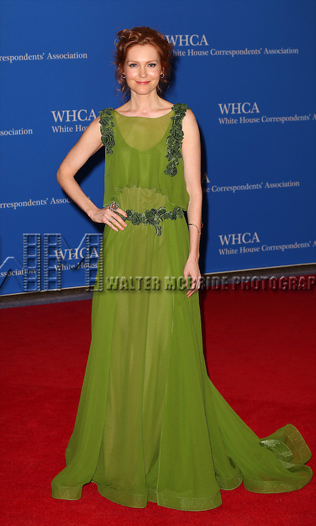 Darby Stanchfield attends the 100th Annual White House Correspondents' Association Dinner at the Washington Hilton on May 3, 2014 in Washington, D.C.