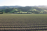 Agriculture in the Salinas Valley