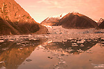 Alaska, Cruising the Southeast wilderness waterways on the Spirit of Discovery..Sawyer Glacier and icebergs in Tracy Arm.  .Photo #: alaska10444 .Photo copyright Lee Foster, 510/549-2202, lee@fostertravel.com, www.fostertravel.com.