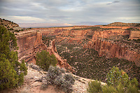 A canyon in the Colorado National Monument looking east with Mount Garfield highlighted by the sun in the distance.