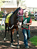 Readyshakego before The Kent Stakes (gr 2) at Delaware Park on 9/7/13