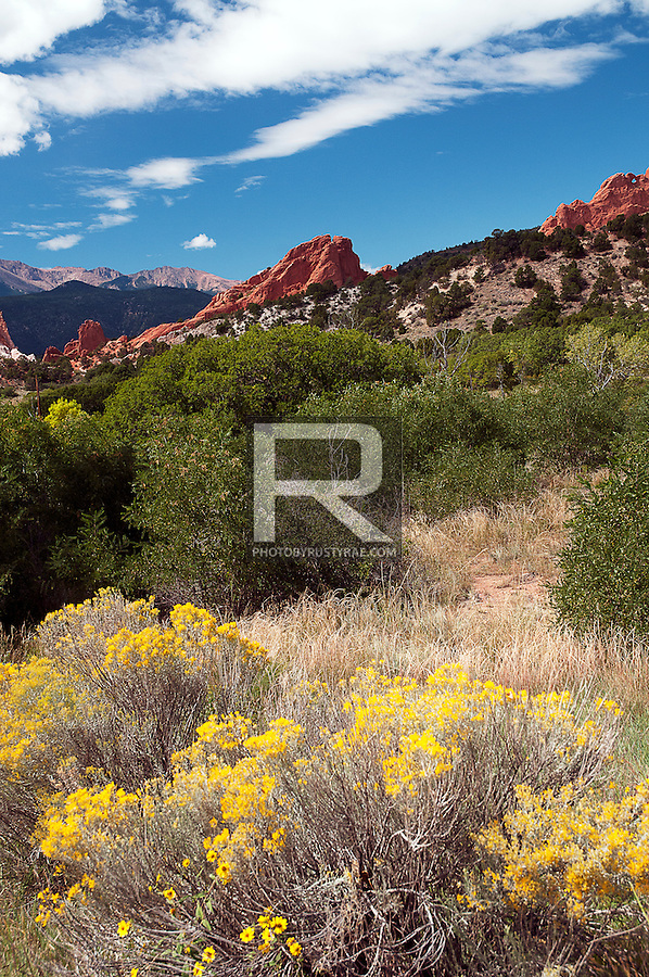 Garden of the Gods is surrounded by a good variety of foliage.