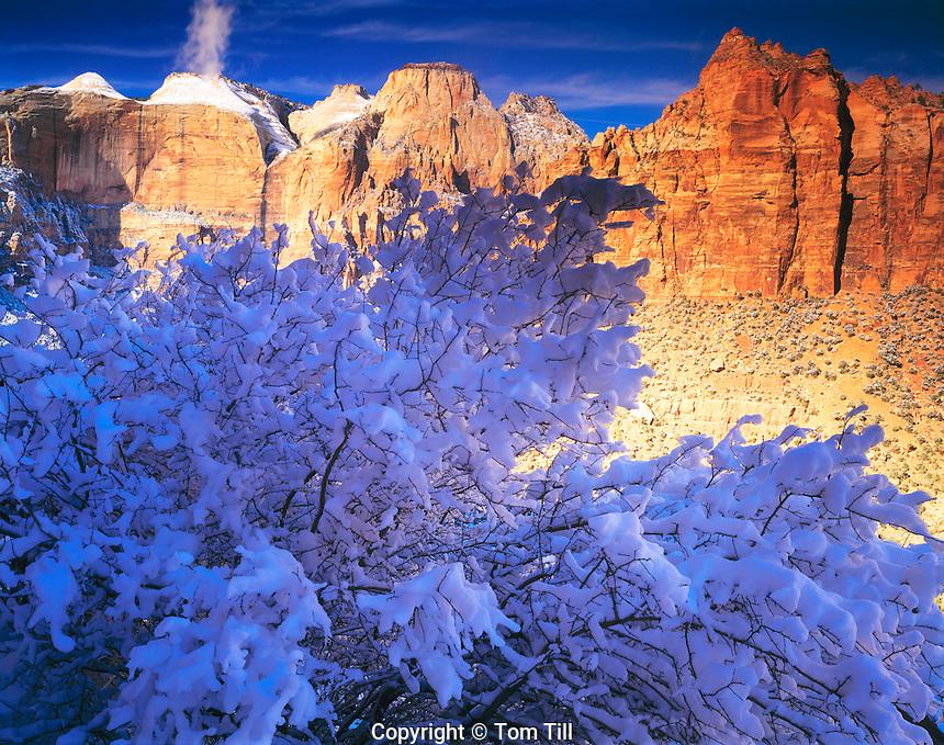 Snow & Zion Peaks, Zion National Park, Utah   Seen from near Zion Tuunnel
