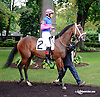 Bekki's Dance before The Small Wonder on Owners Day at Delaware Park on 9/13/14