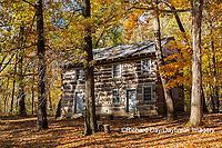 63895-16610 Cabin at Log Cabin Village in fall Kinmundy IL