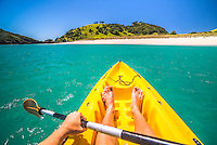Kayaking in the Bay of Islands, in the Waikare Inlet, while on a boat trip from Russell, Northland Region, North Island, New Zealand